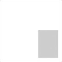 Premium Album Cameo Cover Layout Square Seven