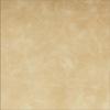 Premium Photo Album Cover - Distressed Leather Palomino
