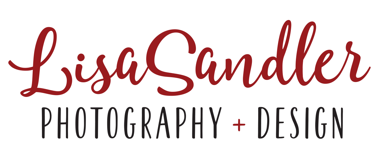 Lisa Sandler Photography + Design Logo